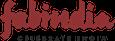 content writing india - fab india logo